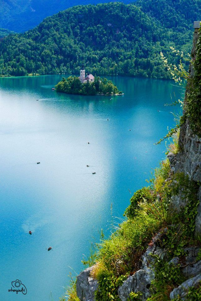 travel photography bled slovenje slovenia lake pond tree boat hill mountain rope cloud castle isle island