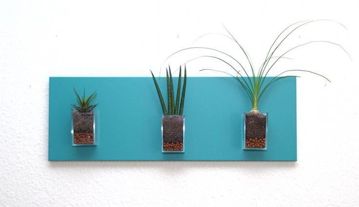 Tableau végétal MiniKipos - Les Sveltes