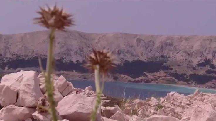 Wyspa Krk, okolice kurortu Baska http://www.chorwacja24.info/ tam jest więcej filmów z Chorwacji