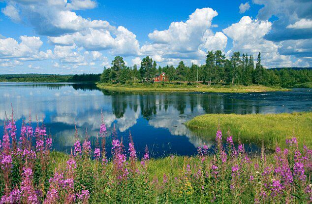 Summertime in Finland.