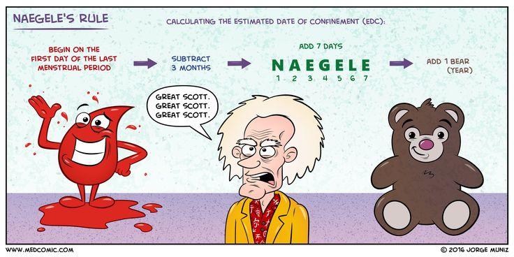 Naegele's Rule