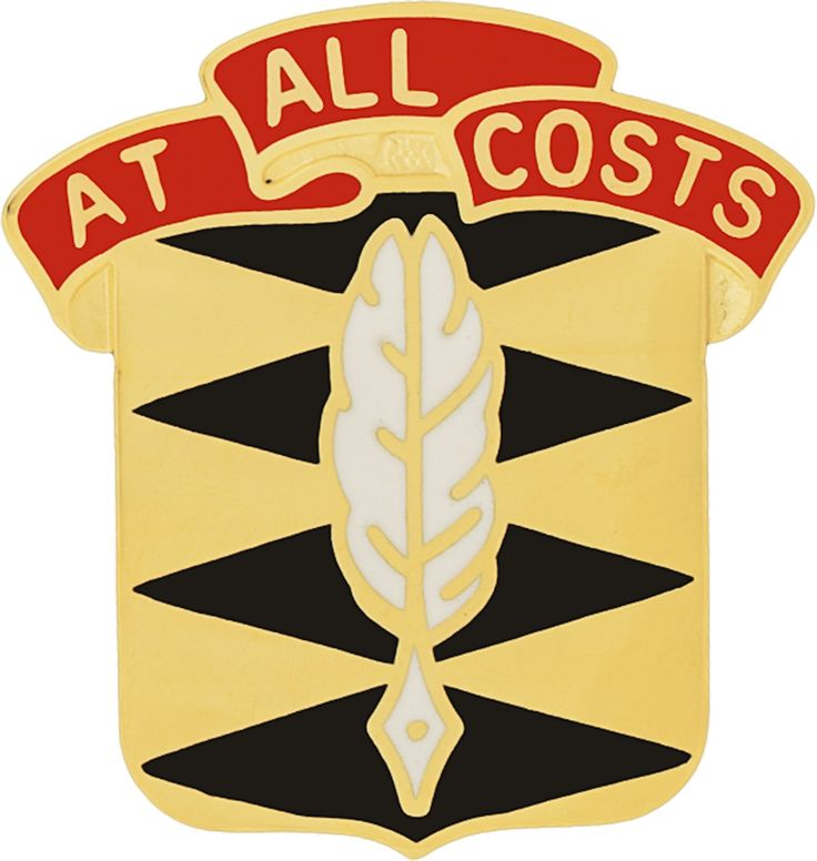 105th Finance Bn Unit Crest (At All Cost)