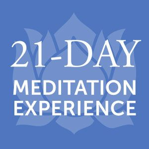 Meditation Experience • Simple Login | Users