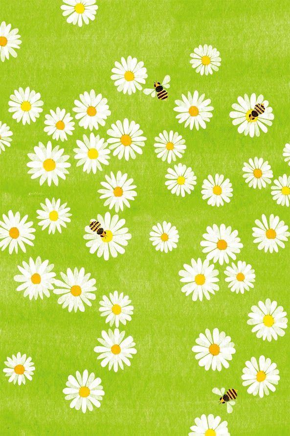 Kazuaki Yamauchi, daisies and bees illustration.