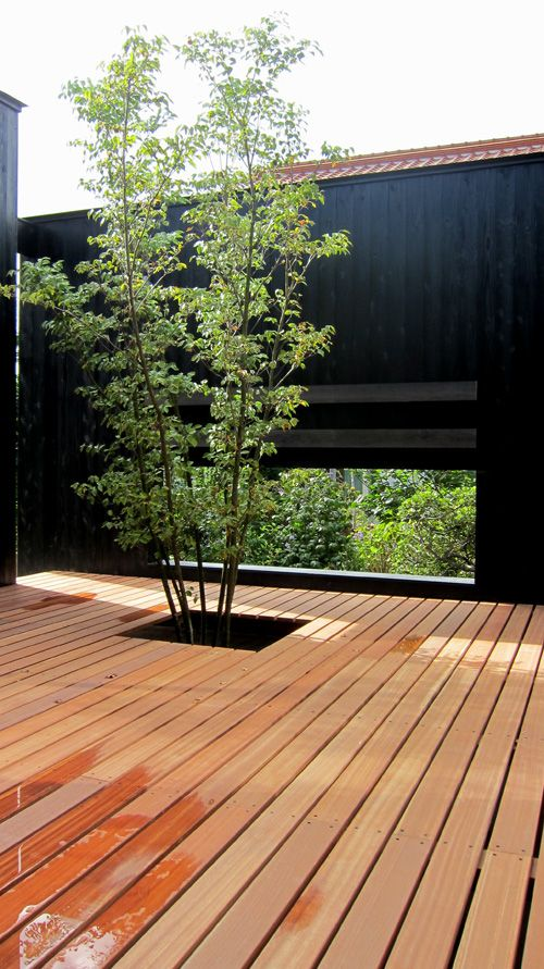 Gorgeous way to incorporate existing trees into a new deck.