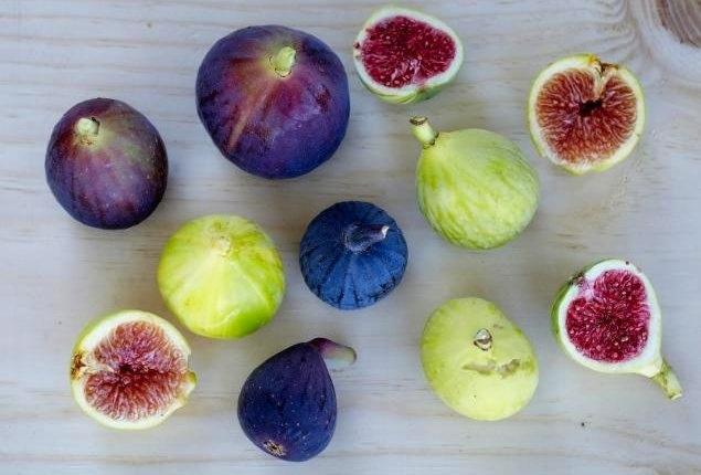 alice wemple: aubergine + citrine