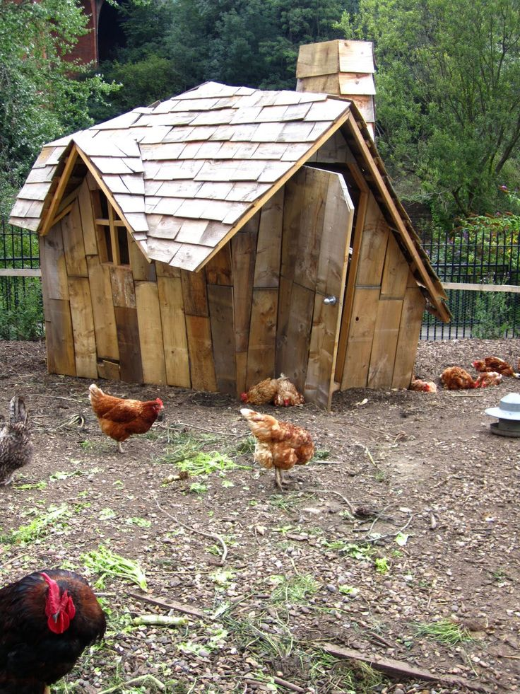 i love it! kippenhuisjes hoeven niet saaie kleine dingen te zijn. creatieve creaties met gerecycleerde materialen zijn een aanwinst inde tuin.