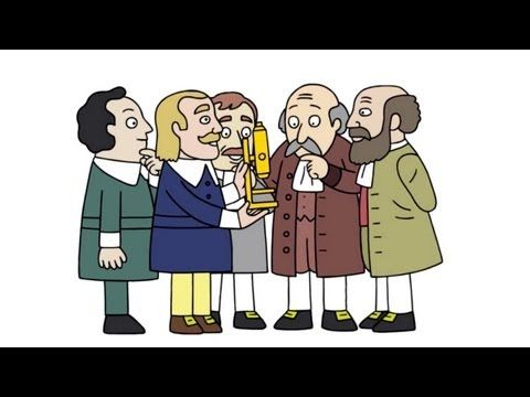 Scientific discovery isn't as simple as one good experiment. The weird and wonderful history of cell theory illuminates the twists and turns that came together to build the foundations of biology. ed.ted.com