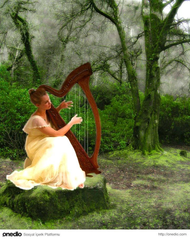 Canola( Kelt Mitolojisi) - İrlanda harpını icat eden kadının adıdır. Sevgilisiyle tartışıp evine gitmiş, geceleyin çürüyen balina iskeletlerinde kalmış liflerin rüzgârda çıkardığı sesten esinlenerek ertesi gün bir harp yapmıştır.
