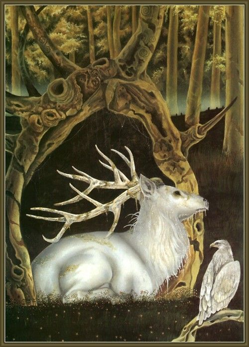 The white stag is a familiar creature of myth and legend.  The white stag in Celtic myth is an indicator that the Otherworld is near. It appears when one is transgressing or breaking a taboo. It also appears as an impetus to quest--the white stag or hart often appears in the forests around King Arthur's court, sending the knights off on to adventure against gods and fairies.