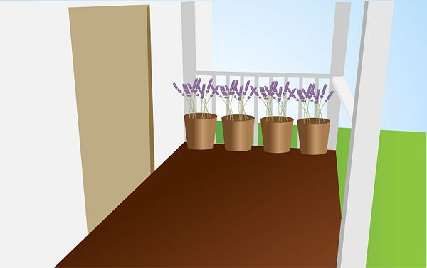Landscape with fly-repelling plants. Flies are deterred by the scents of some plants, so keep potted plants on your patio or near your doors that repel flies:   False indigo Mint Lavender Elderberry Basil