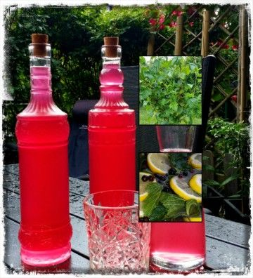 Matnyttigt - Måltidsdryck på Vinbärsblad & Citon