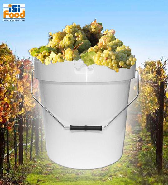La vendemmia tradizionale fatta con tecniche artigianali ci porta a gustare un prodotto vivo ed unico, e se ben curata offre un vino di qualità. Per poter organizzare una buona vendemmia è bene rifornirsi dell'attrezzatura corretta, tra la quale non sono da sottovalutare i contenitori per la raccolta dell'uva.