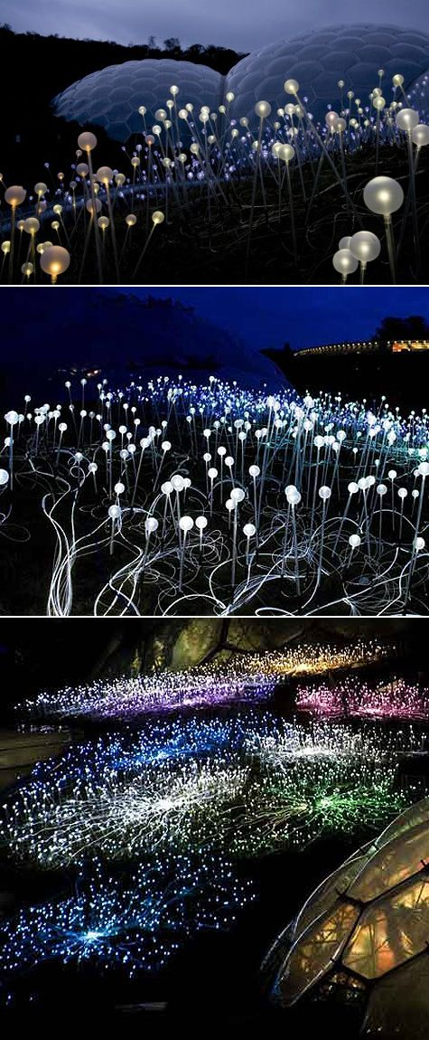 "Field of Light was an installation at the Eden Project in Cornwall, England by lighting designer Bruce Munro. The installation was comprised of 6,000 acrylic stems with fibre optic cables that represent light flowers or seeds that ""blossom"" at night."