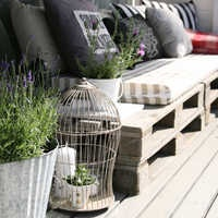 pallets! and birdcage