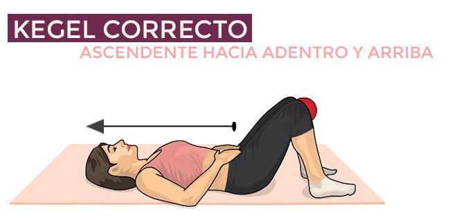 Conoce consejos sencillos sobre los ejercicios de Kegel, aquí tienes una Guía básica sobre su uso.