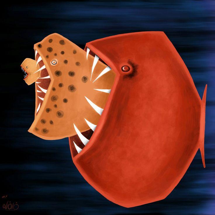 #fishing #illustration