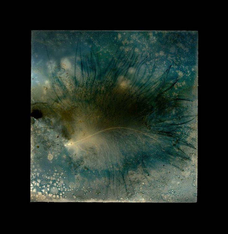Paul Kenny undersea, cocklawburn - 2013