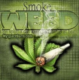 weedjuana - Powered by SocialDOE