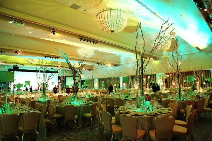 """This year's gala had an Emerald City theme. """"It conveyed a message to our patrons that we have heart, we..."""