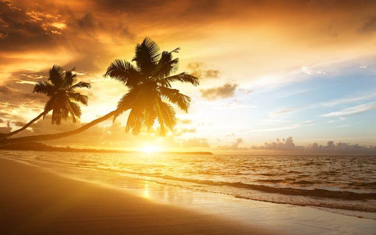 カリブ海沿岸の美しい風景、日の出、ヤシの木、海、雲、空 壁紙 - 2560x1600