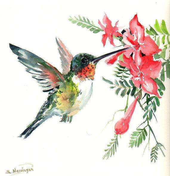 Vuelo colibrí Acuarela original pintura 12 X 12 en flores