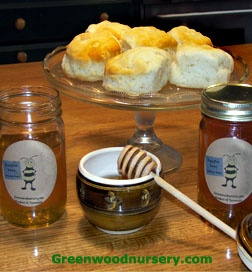 Buzzy Bee's Pure Honey. The Wildflower honey is perfect for tea while the Sourwood honey is milder in flavor and is delightful drizzled over fruit.  GreenwoodNursery.com $7.95