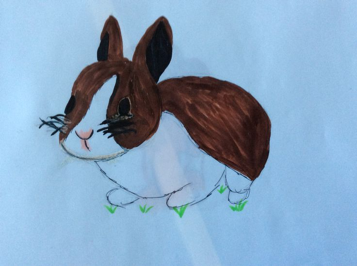 A bunny by moose. Don't you think it's cute?