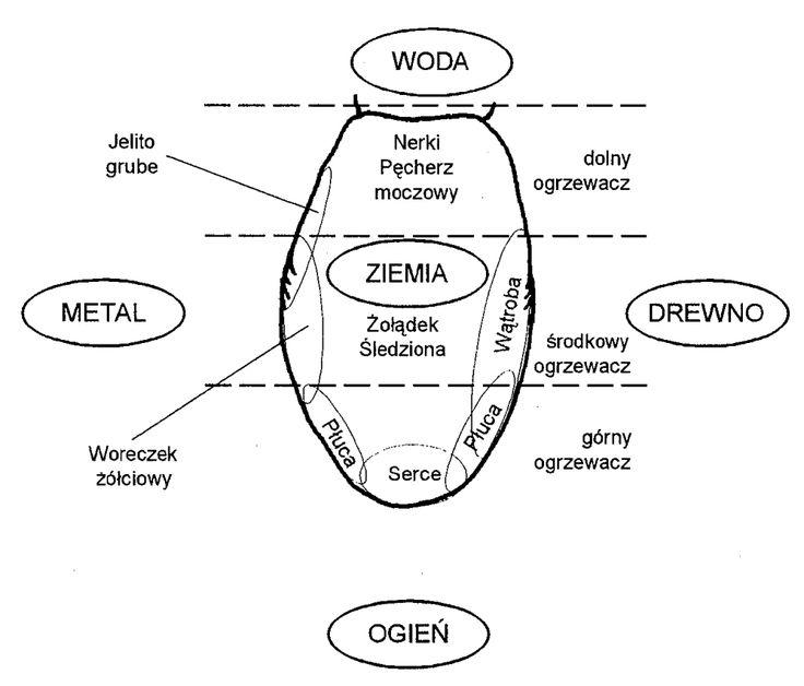 mapa_języka
