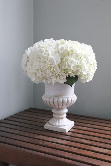 Pin By The Little Flower Soap Co On Jamali Garden Vases