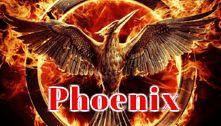 How to Install Phoenix Kodi Add-on - The TV Box Professionals