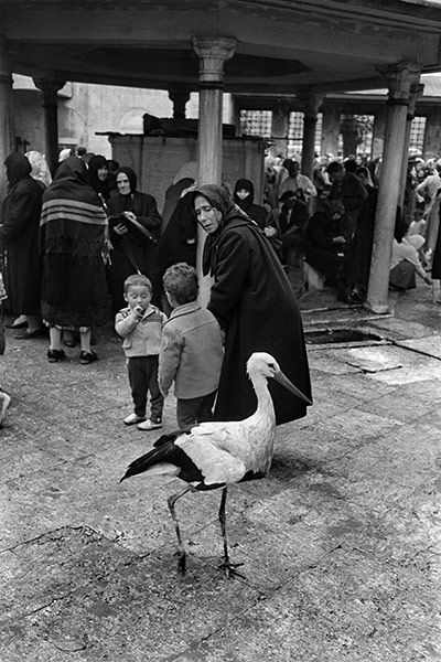 Credit: Ara Guler/Magnum In the courtyard of the Eyüp Sultan tombs, 1958 #Vintage #Istanbul #pictures