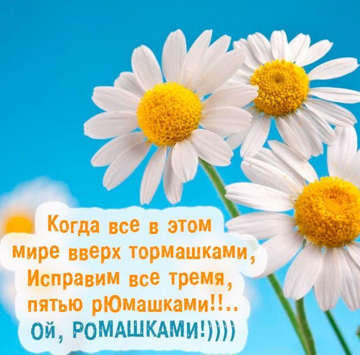 Елена Береснева