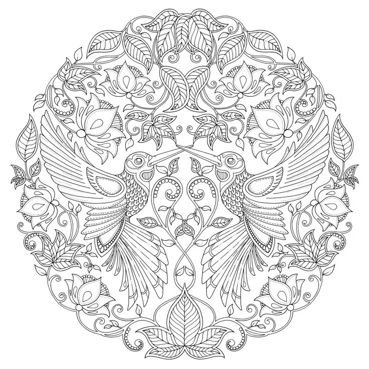 Owl Leaves Print Colouring