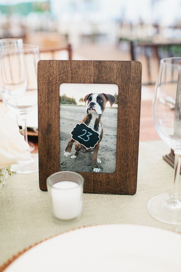 Pics of your dog holding the number as the table number. Cute.  Sarah Jayne Photography.  Read more - http://www.stylemepretty.com/massachusetts-weddings/2013/07/17/rustic-chic-new-hampshire-wedding-from-sarah-jayne-photography/