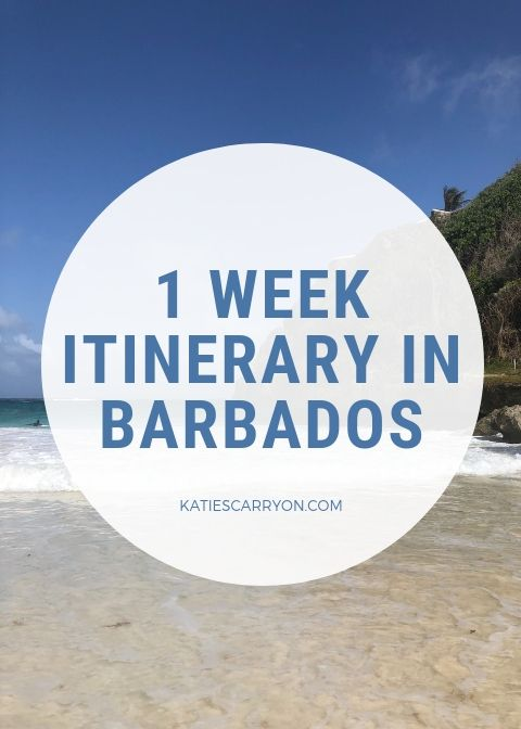 Travel To Barbados In 2019 Here Is Everything You Should Know And