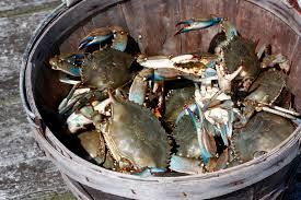 "Crab mentality"" also known as ""Crabs in a bucket"" talks about a behavior that crabs display when they are placed in a bucket or trap. The crabs won't allow another crab to crawl out of the bucket, they will even go as far as breaking the claws of the crab that's trying to get out.  http://www.prosperity808.com/crab-mentality/"