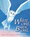 White Owl Barn Owl