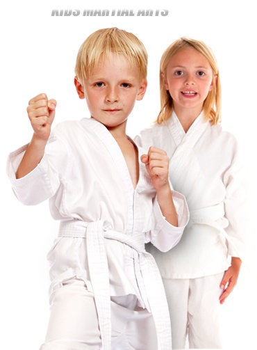 Sidekicks Family Martial Arts Centers - Martial Arts in Lithia, FL - Martial Arts in FishHawk Ranch. This is my martial arts school and it's a great place to learn self-defesne, improve your fitness, lose weight, and boost your confidence - all in the first few weeks.