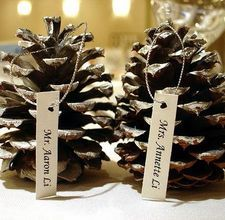 pincecone winter wedding escort cards/ Place cards @Amanda Grinnell  if you liked the pinecone cake...