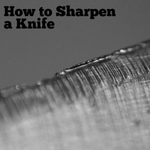 How to Sharpen a Knife, Part I - Dan's Survival Depot