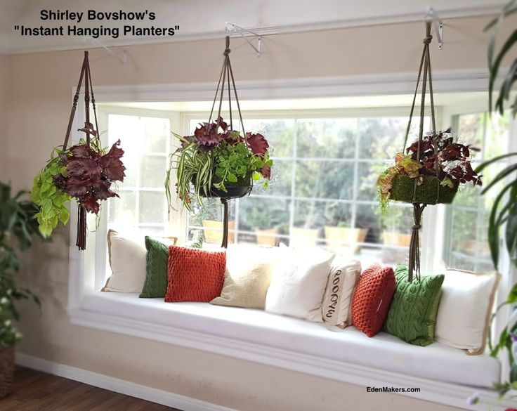 Best 25+ Indoor hanging planters ideas on Pinterest | Indoor hanging  baskets, Indoor hanging plants and Hung vs hanged
