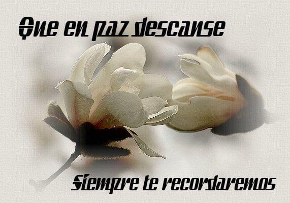 Para que le puedas decir a un amigo o un familiar que a partido de este mundo que descansa en paz , estas rosas te pueden ser de ayuda para que le envies