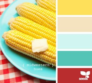 Basic introduction to the color wheel and combinations. Photos are very helpful.
