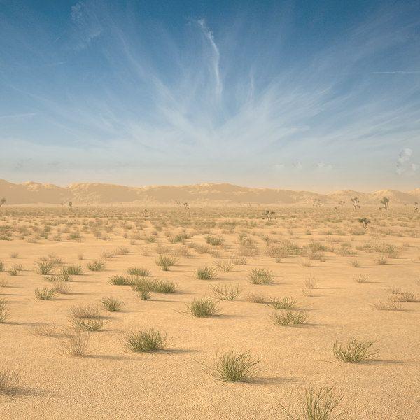 Desert Landscape 3d Model 3d Scene Landscape Model Landscape Desert Landscaping