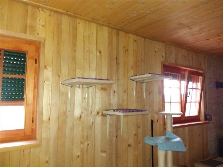 Einfach mal die Katzen alle Wände hochgehen lassen. In einfachen Häuser ist oben wärmer und das mögen sie - und Übersicht gefällt sowieso!