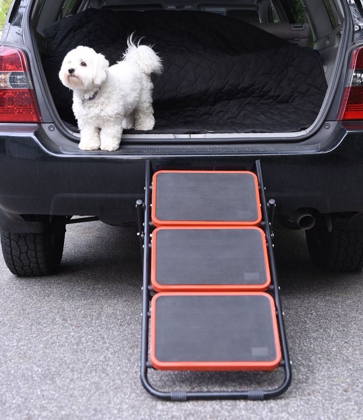 Best 25 Dog Ramp For Car Ideas On Pinterest Dog Car