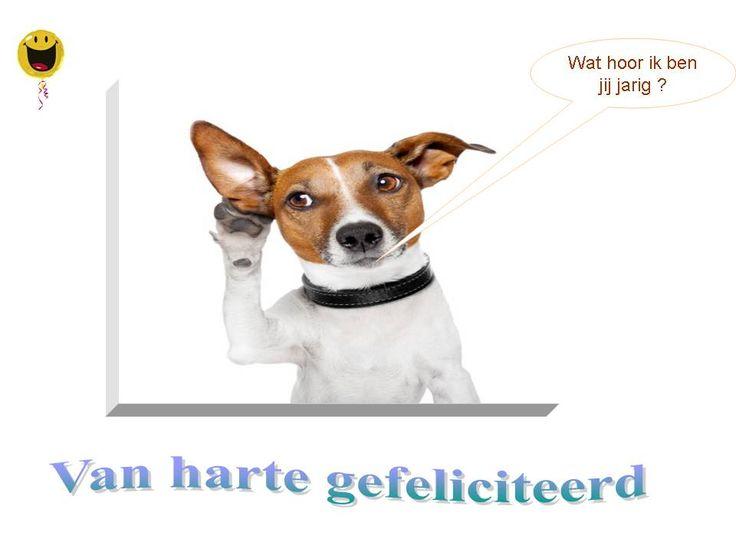 Kleurplaat Verjaardag Hond Idee 235 N Over Kleurpagina S