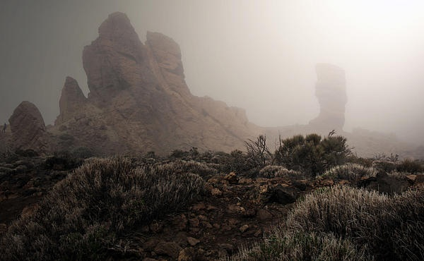 Photo taken in National Park El Teide, Teneriffa, Spain.