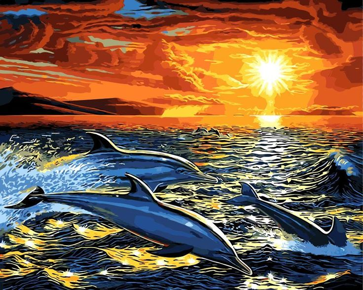 Dolphin paint by number kit in 2020 paint by number kits